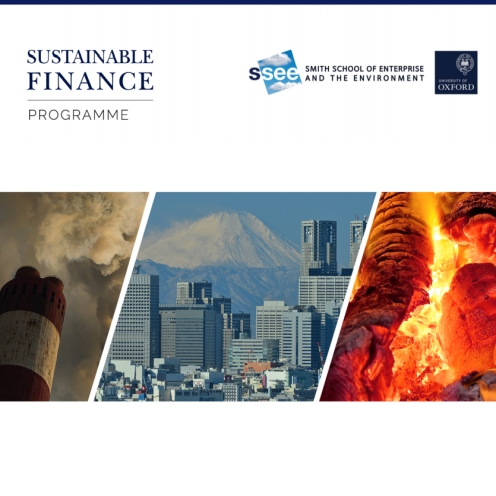 May 2016 - Stranded Assets and Thermal Coal in Japan: An analysis of environment-related risk exposure